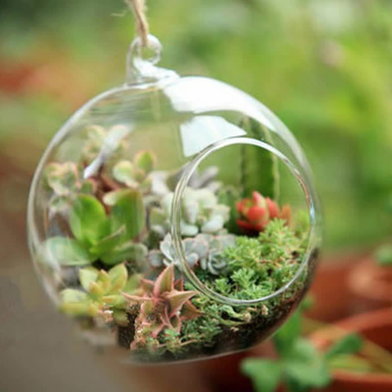 O.RoseLif Brand Glass Ball Globe Shape Terrarium Ball Flower Hanging Planter Terrarium Container Landscape Ornament Garden Decor